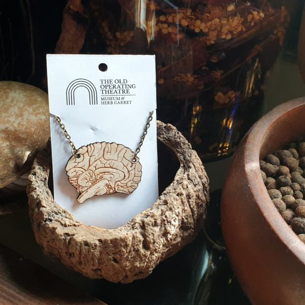 Pendant of a brain against a still life in the museum.