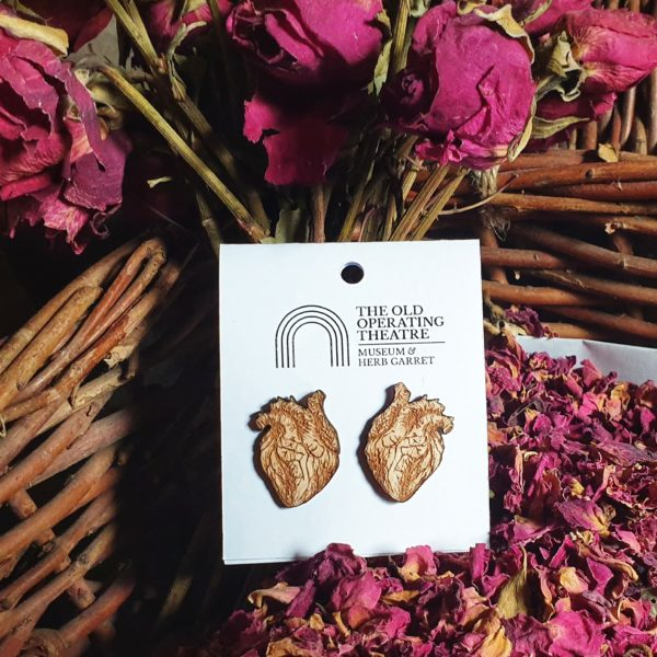 A pair of stud earrings in the shape of an anatomical heart