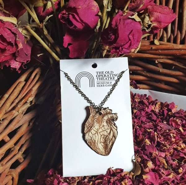 An anatomical heart set against a background of roses.