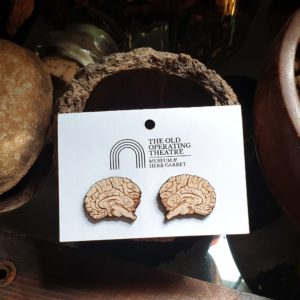 Pair of anatomical brain stud earrings on a still life in the museum.