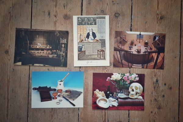 Apothecary Postcard Bundle still life