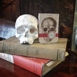 Small Notebook with skull still life.