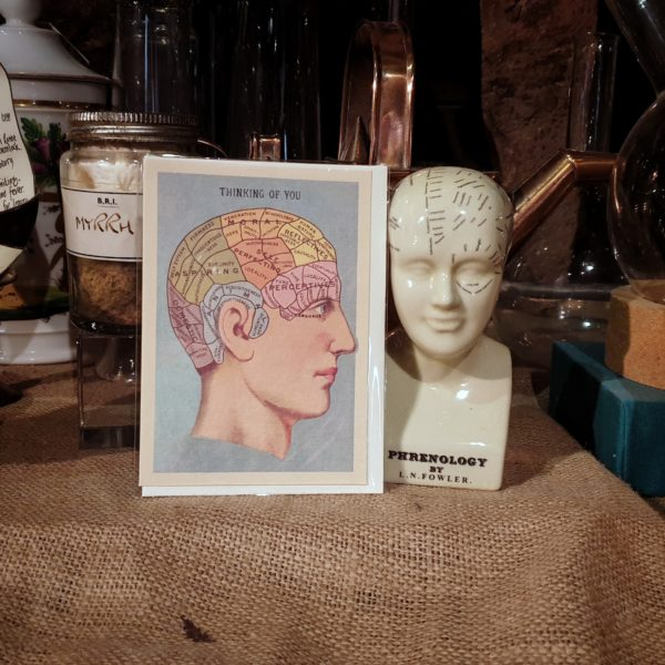 Still life with phrenology card